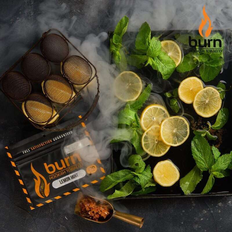 Табак Burn - Lemon Mint (мятный лимон) 100 г