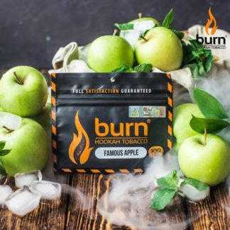 Табак Burn - FAMOUS APPLE 20 г